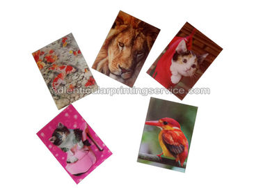 Cina Small Size Adhesive 3D Lenticular Stickers PET/ PP Printing For Key Chain pabrik