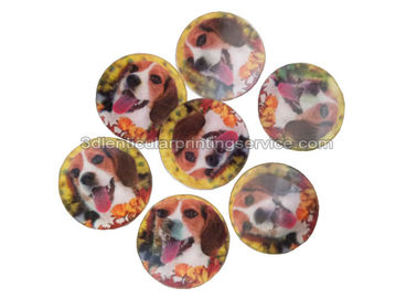 PET / PP Lovely Animal Image Sticker 3d Lenticular Printing Adhesive For Kids